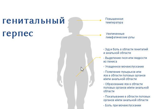 генитальный герпес у мужчин симптомы фото